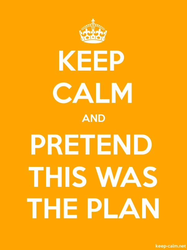 KEEP CALM AND PRETEND THIS WAS THE PLAN - white/orange - Default (600x800)