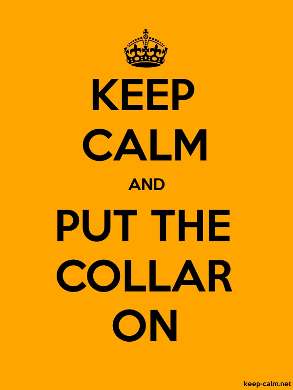 KEEP CALM AND PUT THE COLLAR ON - black/orange - Default (600x800)