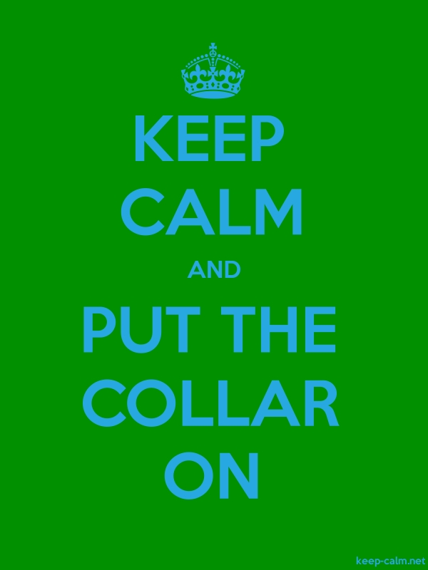 KEEP CALM AND PUT THE COLLAR ON - blue/green - Default (600x800)