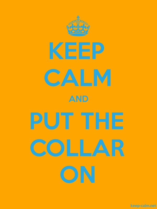 KEEP CALM AND PUT THE COLLAR ON - blue/orange - Default (600x800)
