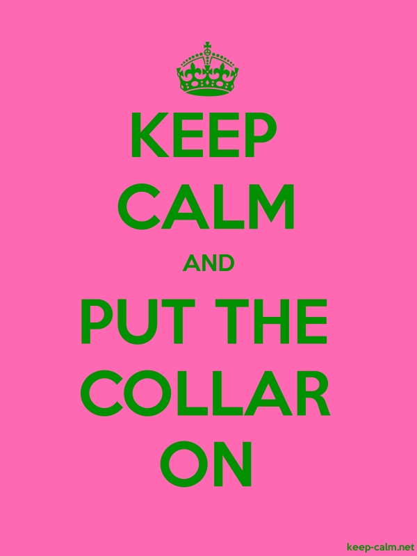 KEEP CALM AND PUT THE COLLAR ON - green/pink - Default (600x800)