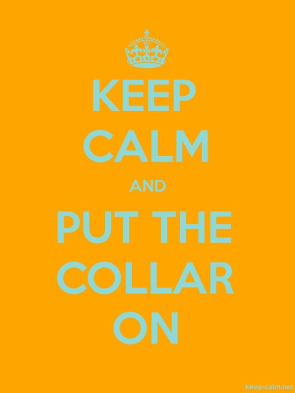 KEEP CALM AND PUT THE COLLAR ON - lightblue/orange - Default (600x800)