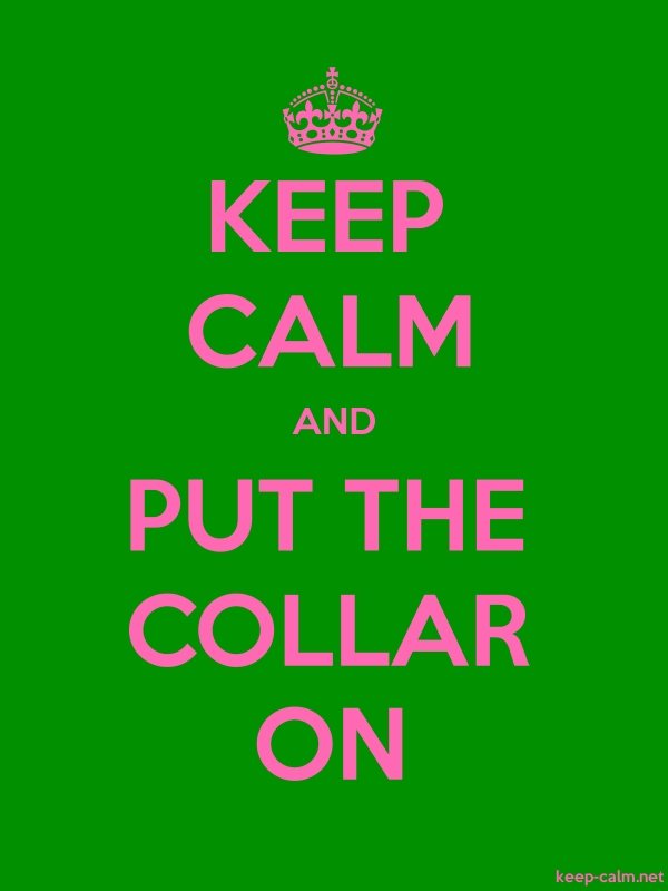 KEEP CALM AND PUT THE COLLAR ON - pink/green - Default (600x800)