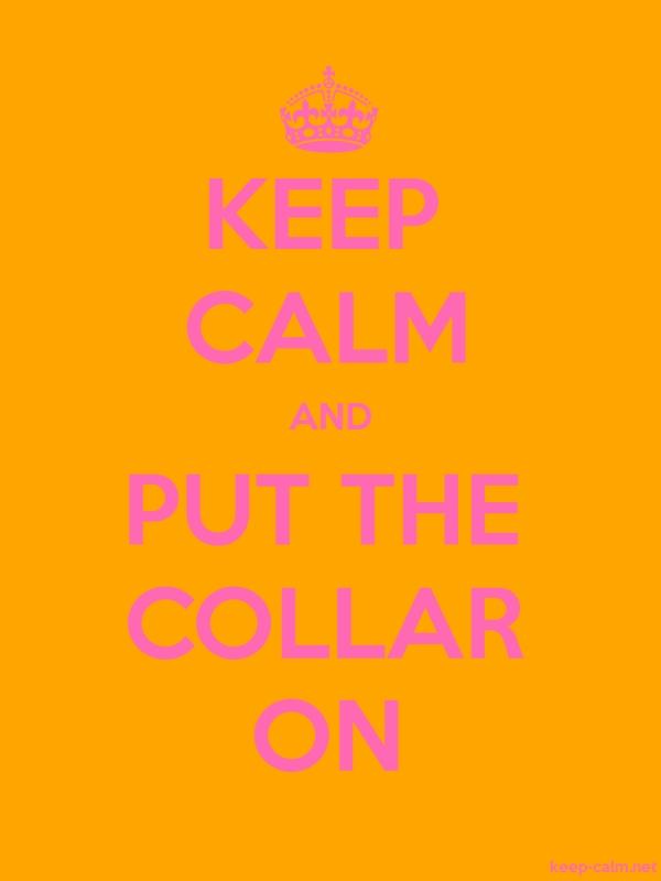 KEEP CALM AND PUT THE COLLAR ON - pink/orange - Default (600x800)