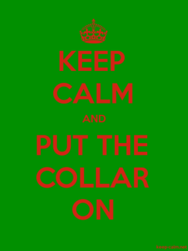 KEEP CALM AND PUT THE COLLAR ON - red/green - Default (600x800)