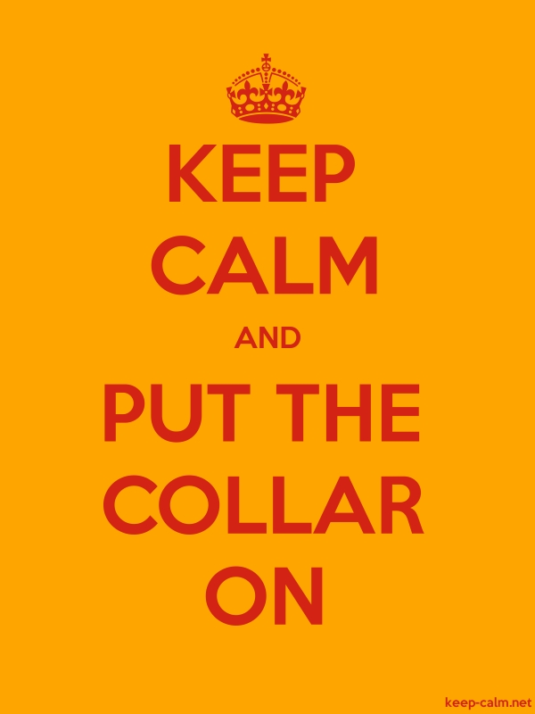 KEEP CALM AND PUT THE COLLAR ON - red/orange - Default (600x800)
