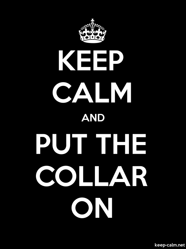 KEEP CALM AND PUT THE COLLAR ON - white/black - Default (600x800)