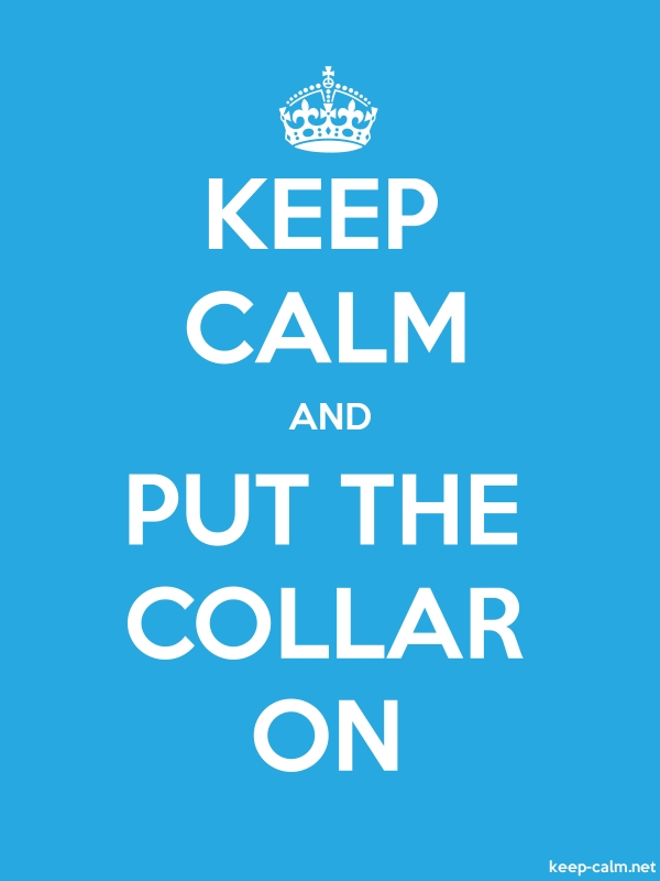 KEEP CALM AND PUT THE COLLAR ON - white/blue - Default (600x800)