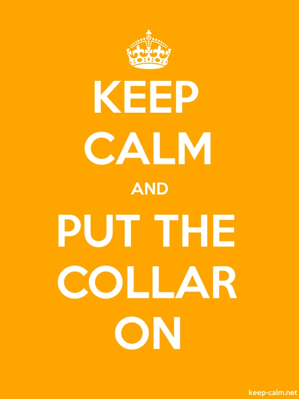 KEEP CALM AND PUT THE COLLAR ON - white/orange - Default (600x800)