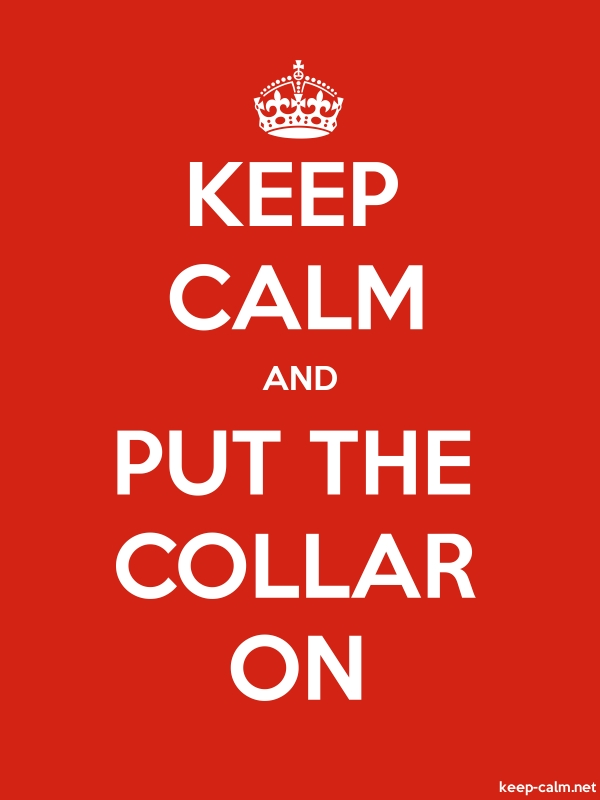 KEEP CALM AND PUT THE COLLAR ON - white/red - Default (600x800)
