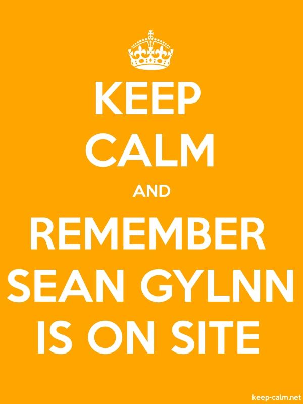 KEEP CALM AND REMEMBER SEAN GYLNN IS ON SITE - white/orange - Default (600x800)