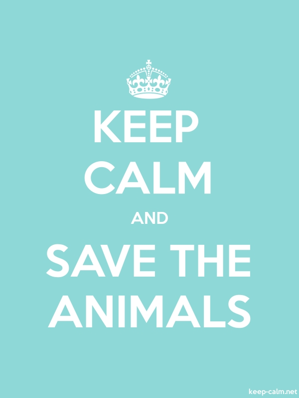 KEEP CALM AND SAVE THE ANIMALS - white/lightblue - Default (600x800)