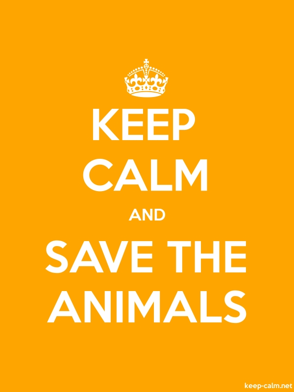 KEEP CALM AND SAVE THE ANIMALS - white/orange - Default (600x800)