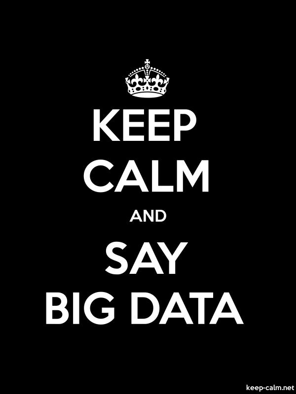 KEEP CALM AND SAY BIG DATA - white/black - Default (600x800)