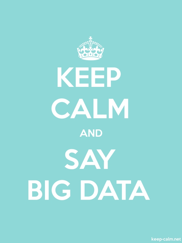 KEEP CALM AND SAY BIG DATA - white/lightblue - Default (600x800)