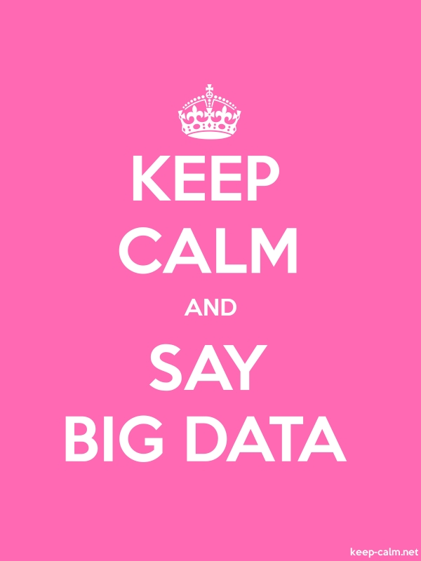 KEEP CALM AND SAY BIG DATA - white/pink - Default (600x800)