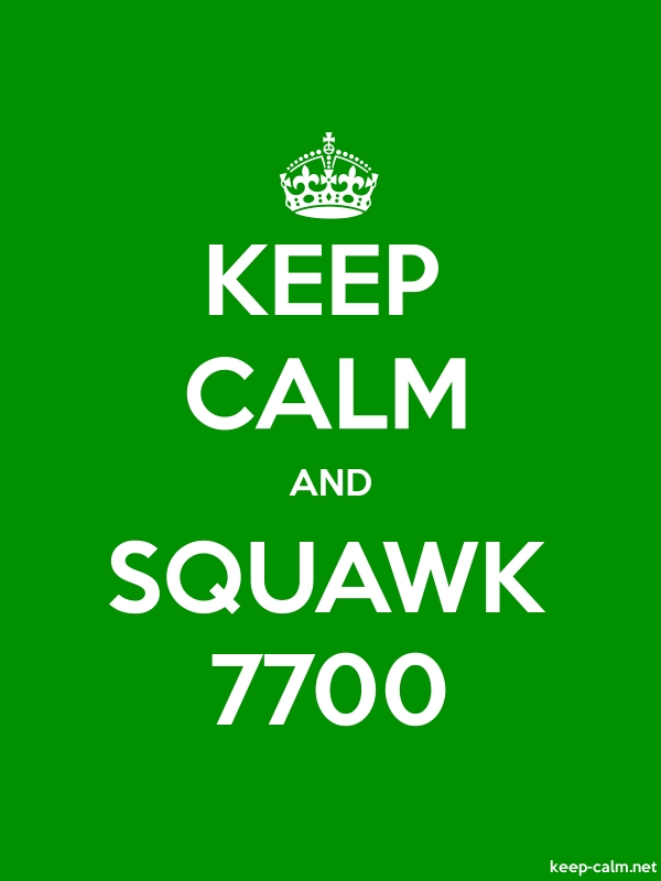 KEEP CALM AND SQUAWK 7700 - white/green - Default (600x800)
