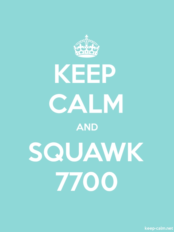 KEEP CALM AND SQUAWK 7700 - white/lightblue - Default (600x800)