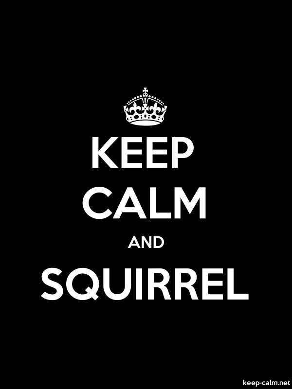 KEEP CALM AND SQUIRREL - white/black - Default (600x800)