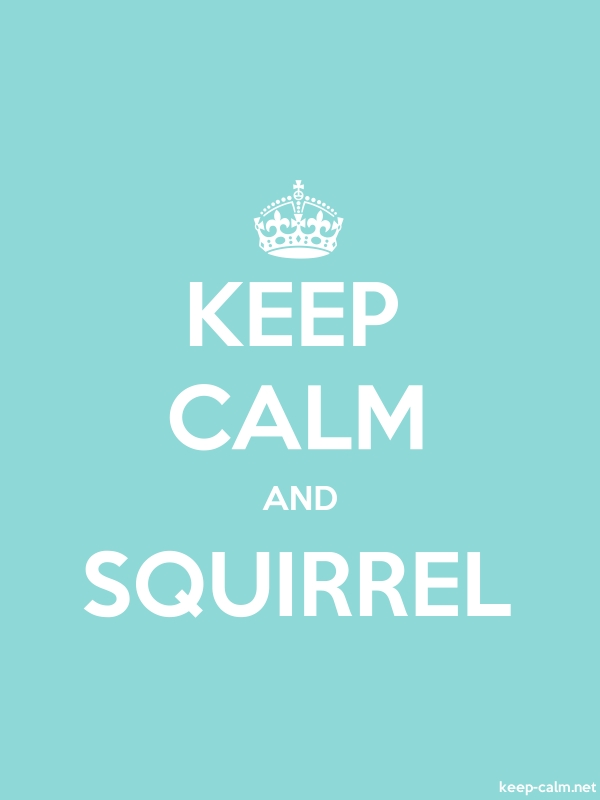 KEEP CALM AND SQUIRREL - white/lightblue - Default (600x800)