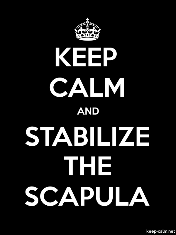 KEEP CALM AND STABILIZE THE SCAPULA - white/black - Default (600x800)