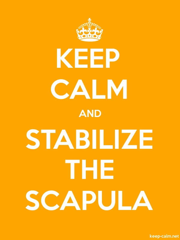 KEEP CALM AND STABILIZE THE SCAPULA - white/orange - Default (600x800)
