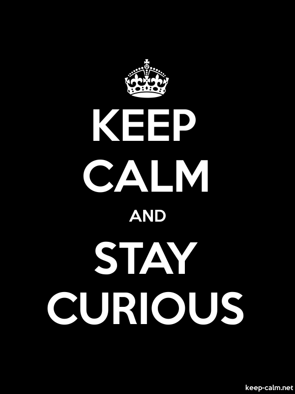 KEEP CALM AND STAY CURIOUS - white/black - Default (600x800)