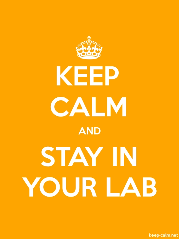 KEEP CALM AND STAY IN YOUR LAB - white/orange - Default (600x800)
