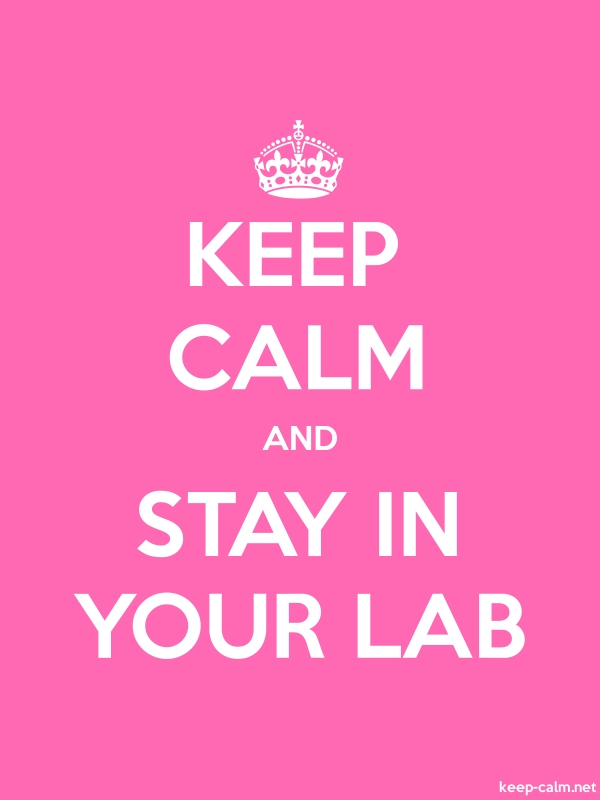 KEEP CALM AND STAY IN YOUR LAB - white/pink - Default (600x800)