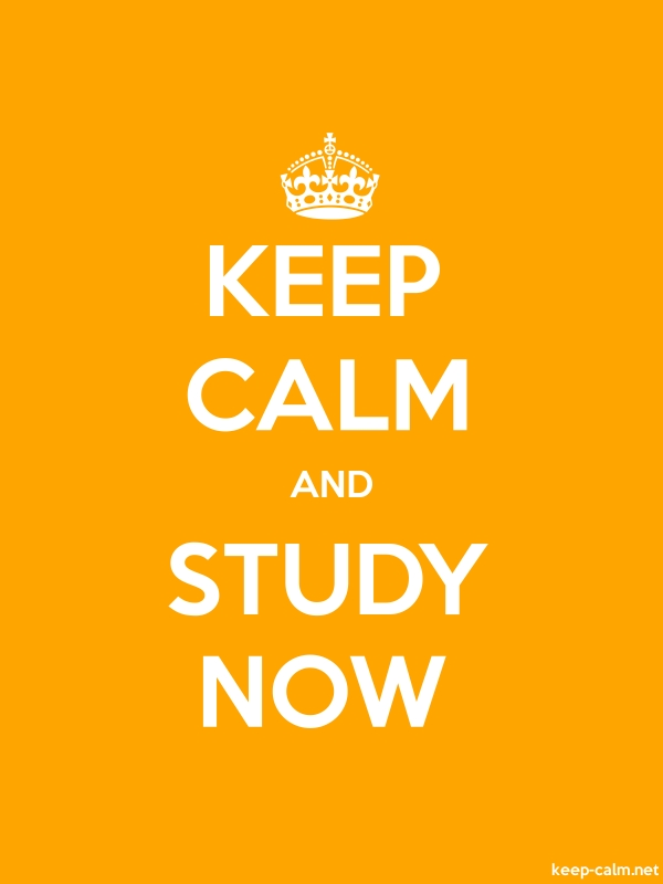 KEEP CALM AND STUDY NOW - white/orange - Default (600x800)