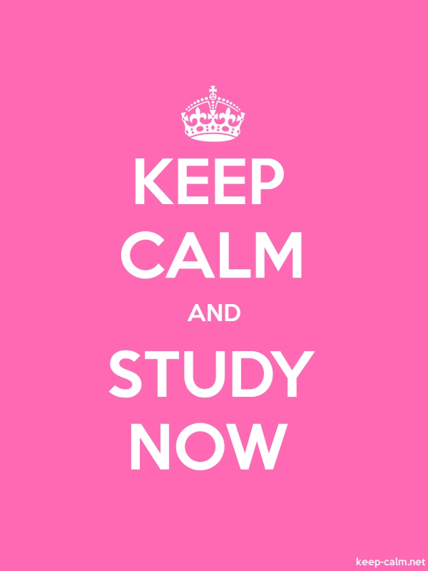 KEEP CALM AND STUDY NOW - white/pink - Default (600x800)