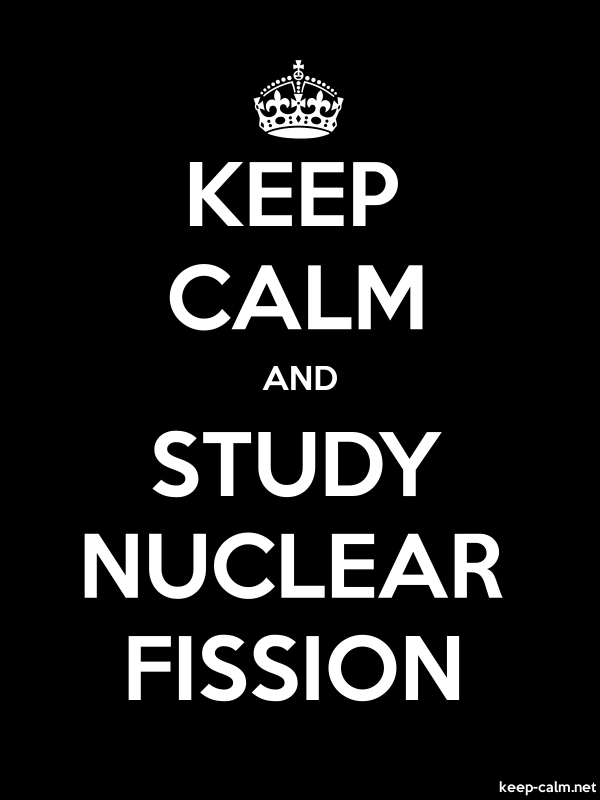 KEEP CALM AND STUDY NUCLEAR FISSION - white/black - Default (600x800)