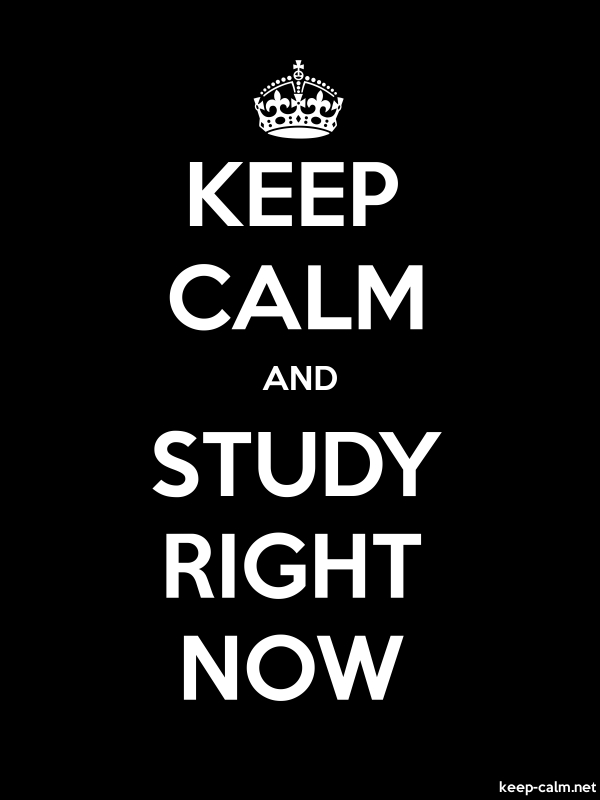 KEEP CALM AND STUDY RIGHT NOW - white/black - Default (600x800)