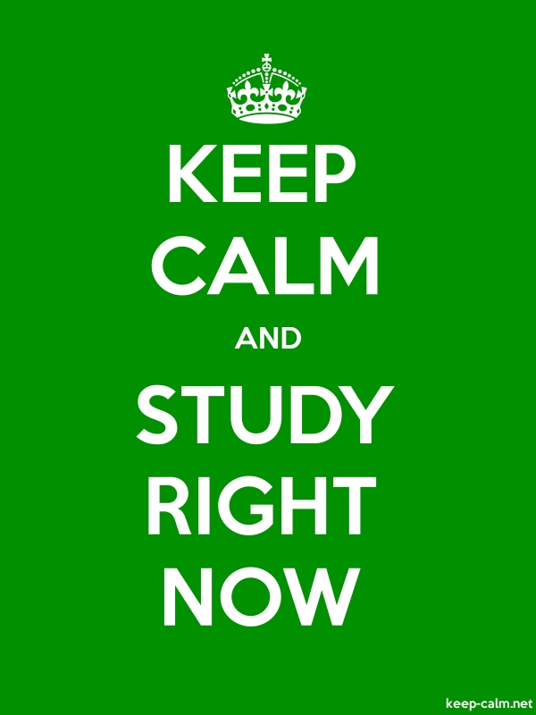 KEEP CALM AND STUDY RIGHT NOW - white/green - Default (600x800)