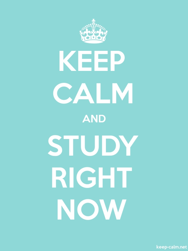 KEEP CALM AND STUDY RIGHT NOW - white/lightblue - Default (600x800)