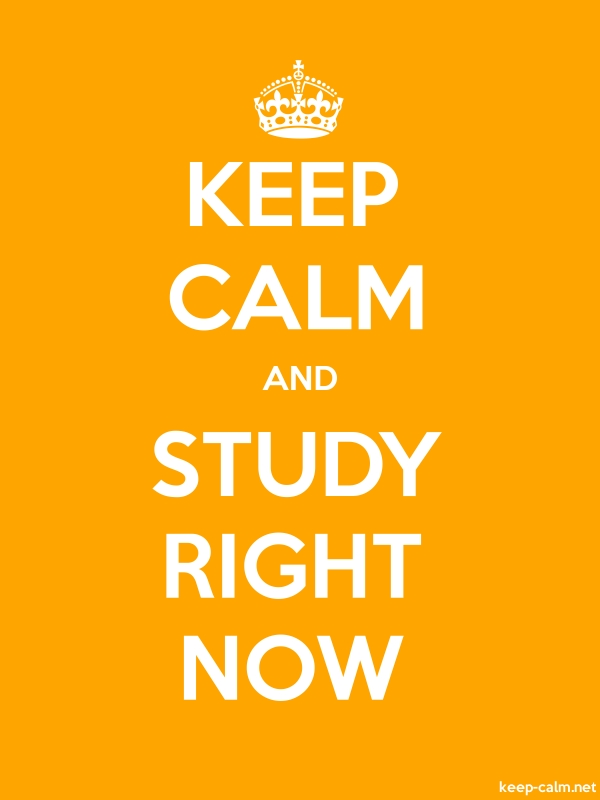 KEEP CALM AND STUDY RIGHT NOW - white/orange - Default (600x800)