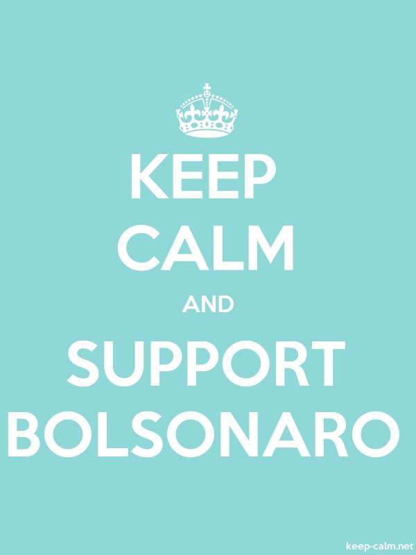 KEEP CALM AND SUPPORT BOLSONARO - white/lightblue - Default (600x800)