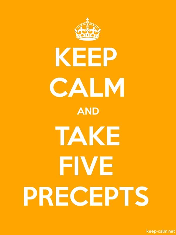 KEEP CALM AND TAKE FIVE PRECEPTS - white/orange - Default (600x800)