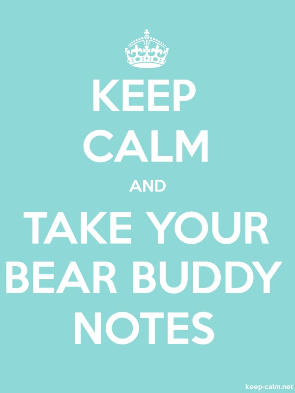 KEEP CALM AND TAKE YOUR BEAR BUDDY NOTES - white/lightblue - Default (600x800)