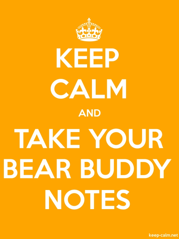 KEEP CALM AND TAKE YOUR BEAR BUDDY NOTES - white/orange - Default (600x800)