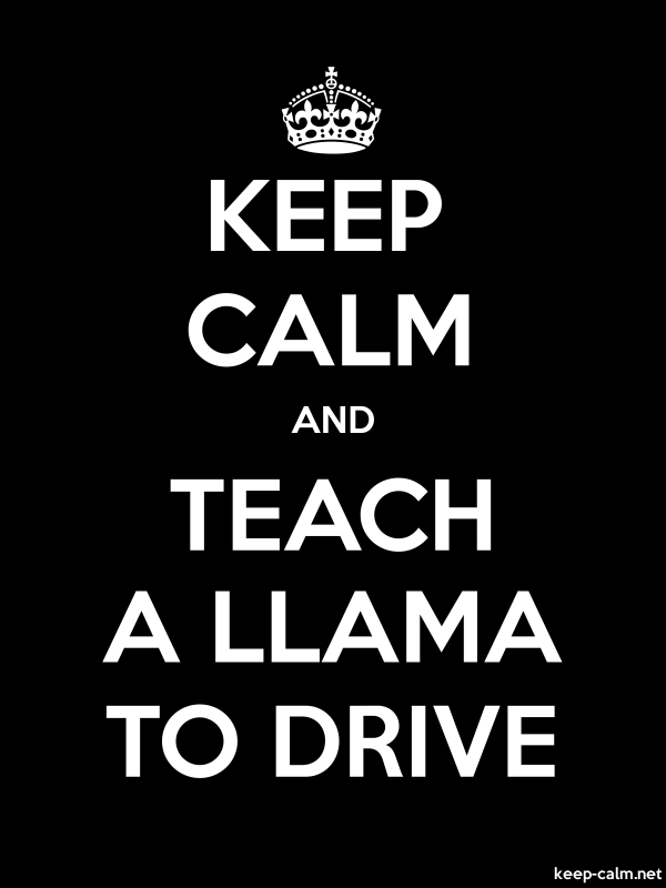 KEEP CALM AND TEACH A LLAMA TO DRIVE - white/black - Default (600x800)
