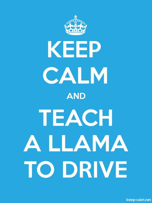 KEEP CALM AND TEACH A LLAMA TO DRIVE - white/blue - Default (600x800)