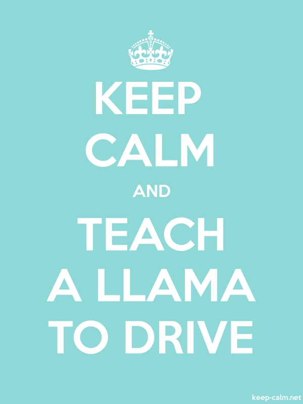 KEEP CALM AND TEACH A LLAMA TO DRIVE - white/lightblue - Default (600x800)