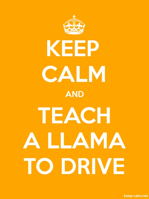 KEEP CALM AND TEACH A LLAMA TO DRIVE - white/orange - Default (600x800)