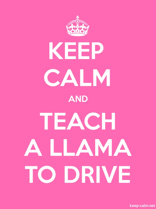 KEEP CALM AND TEACH A LLAMA TO DRIVE - white/pink - Default (600x800)