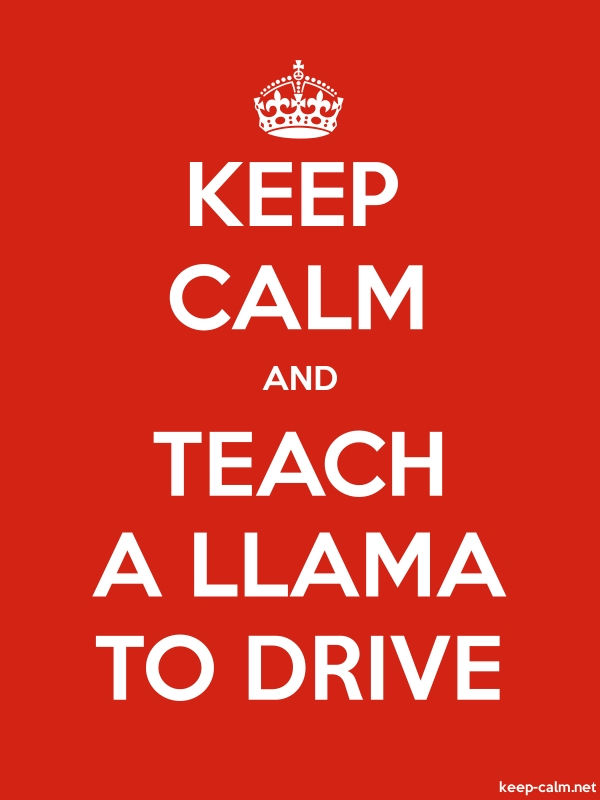 KEEP CALM AND TEACH A LLAMA TO DRIVE - white/red - Default (600x800)