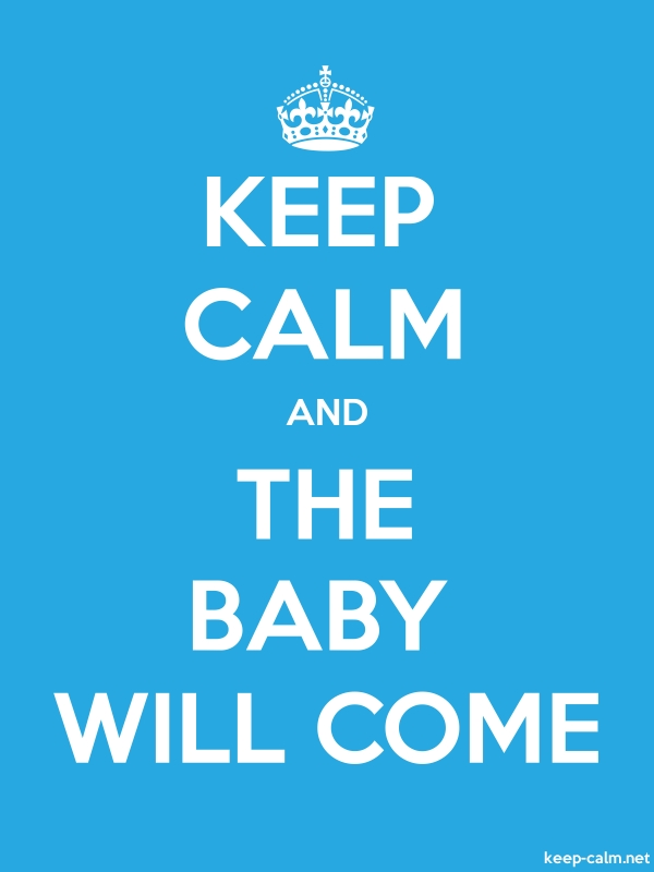 KEEP CALM AND THE BABY WILL COME - white/blue - Default (600x800)