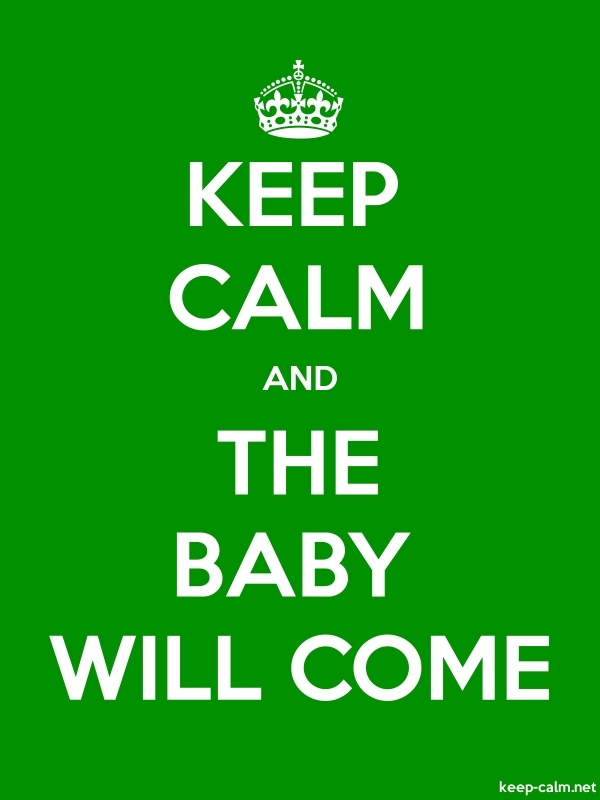 KEEP CALM AND THE BABY WILL COME - white/green - Default (600x800)