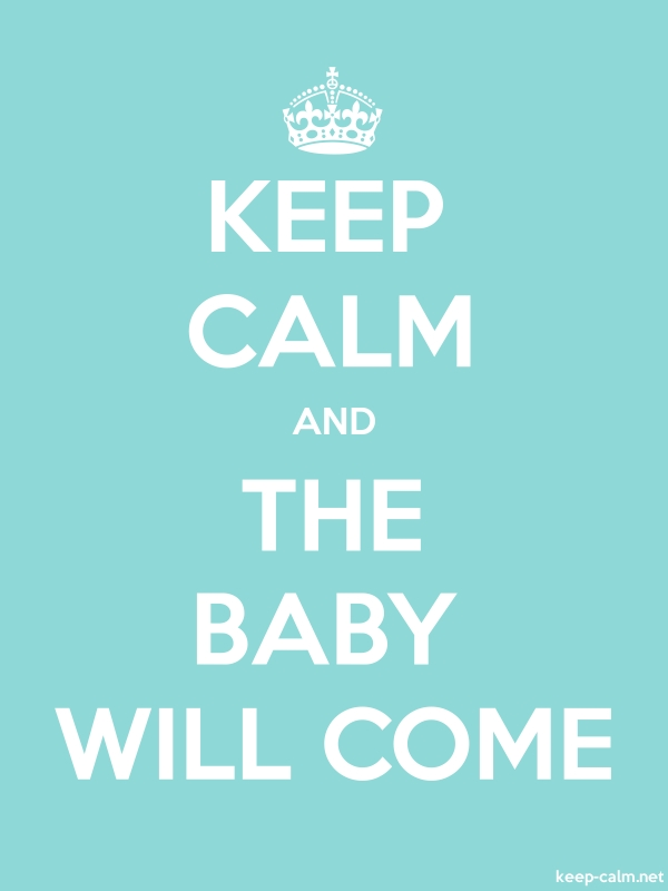 KEEP CALM AND THE BABY WILL COME - white/lightblue - Default (600x800)