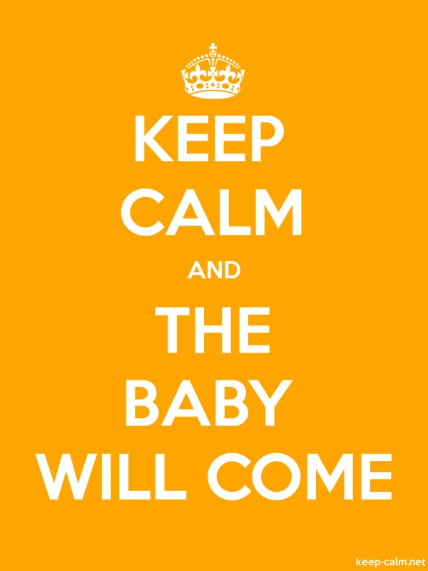 KEEP CALM AND THE BABY WILL COME - white/orange - Default (600x800)